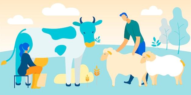 A mulher senta-se na cadeira que ordenha a vaca. homem acariciando ovelhas