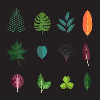 A planta da floresta da estação deixa os ícones da coleção. folha da árvore do outono da flora decorativa.