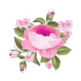 A rosa de florescência.
