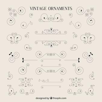 A variedade de ornamento do vintage