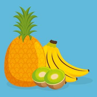 Abacaxi fresco e kiwi com alimentos saudáveis de frutas de banana