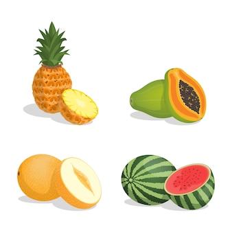 Abacaxi, mamão, melão e melancia