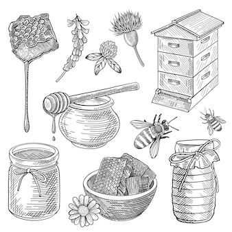 Abelha, mel em jarra, colmeia, favo de mel, colher, flores, conjunto