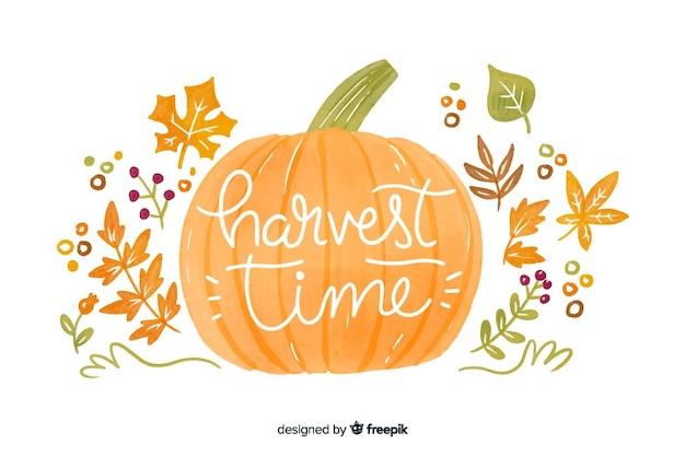 Abóbora de outono em aquarela e folhas de fundo