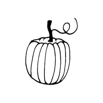 Abóbora desenhada de mão única para cartões, cartazes, receitas, projeto culinário. isolado em um fundo branco. ilustração em vetor doodle.