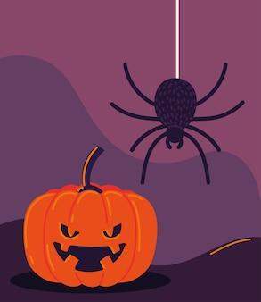 Abóbora e aranha de halloween