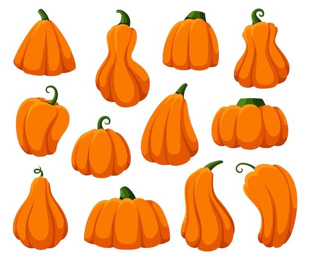 Abóboras de desenho animado. abóbora isolada, cabaças frescas da colheita do outono. feliz dia das bruxas e símbolos de tempo de ação de graças, vetor extravagante de abóbora laranja outono definido em branco