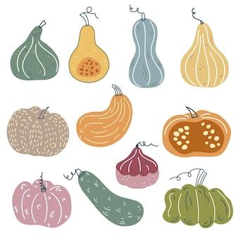 Abóboras fofas em estilo escandinavo coleção de abóboras desenhadas à mão colheita de outono, ação de graças
