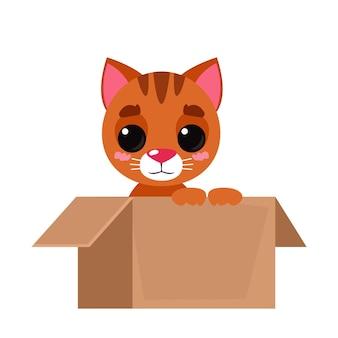 Abra a embalagem da caixa de papelão com um lindo gato vermelho fofinho dentro do estilo plano dos desenhos animados de ilustração vetorial
