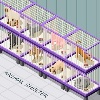 Abrigo de gato isométrico