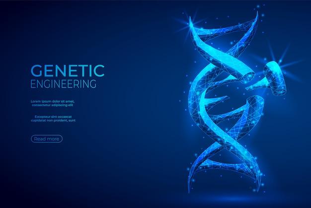 Abstrato de engenharia genética poligonal de dna.