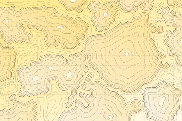Abstrato ondulado do mapa topográfico