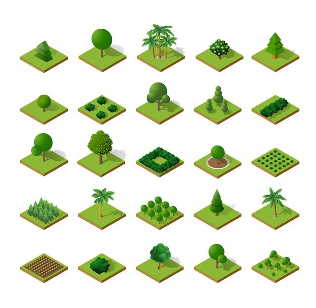 Acampamento de floresta de árvores