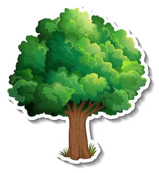 Adesivo de árvore com folhas verdes em fundo branco