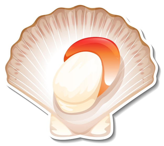 Adesivo de vieira de frutos do mar em fundo branco Vetor grátis