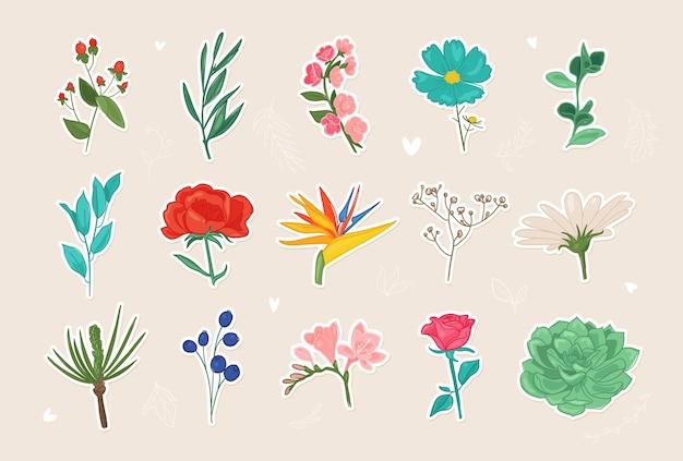 Adesivos de flores floral isolado doodle peônia camomila rosa sakura folhas de magnólia