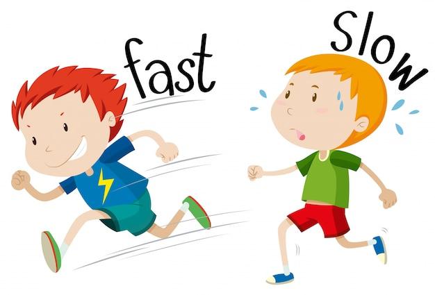 Adjectivos opostos rápidos e lentos