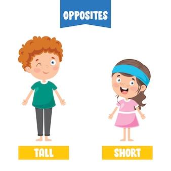 Adjetivos opostos com desenhos animados