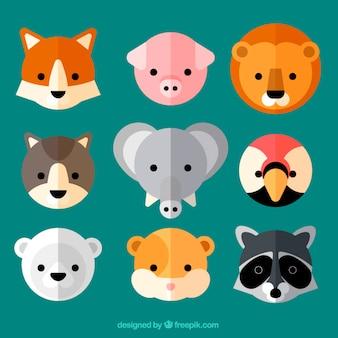 Adoráveis avatares de animais selvagens em design plano