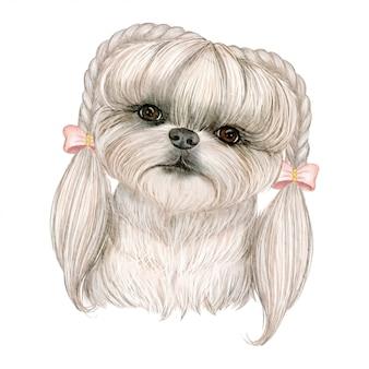 Adorável cachorro fofo com cabelo em tranças fita ilustração aquarela