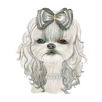 Adorável cachorro fofo com cabelo encaracolado com ilustração em aquarela de fita