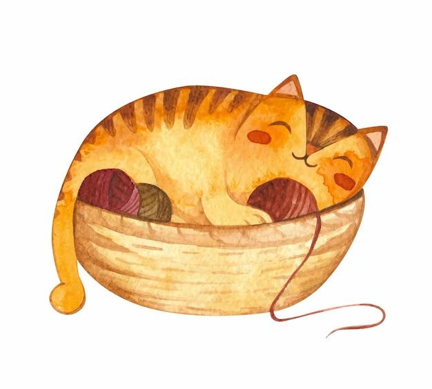Adorável gatinho dormindo na cesta com bolas de lã ilustrações em aquarela de gato
