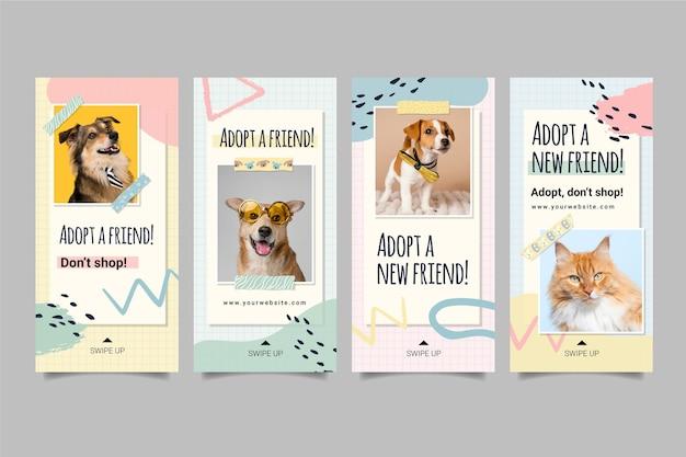 Adote histórias de instagram de animal de estimação