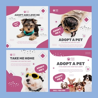 Adote um modelo de postagem no instagram para animais de estimação