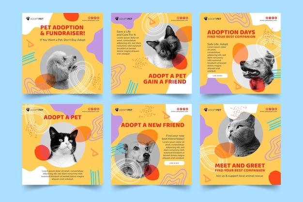 Adote um modelo de postagens de instagram para animais de estimação