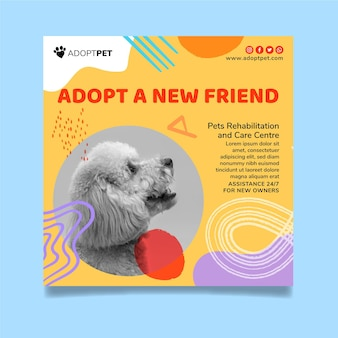 Adote um modelo quadrado de panfleto de animal de estimação