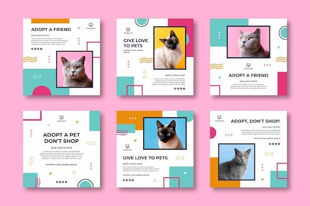 Adote uma coleção de postagens de instagram para animais de estimação