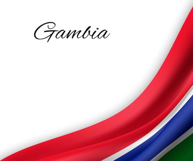 Agitando a bandeira da gâmbia em fundo branco.