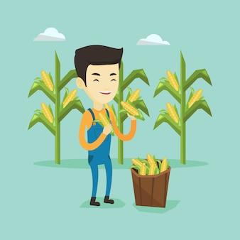 Agricultor coletando milho