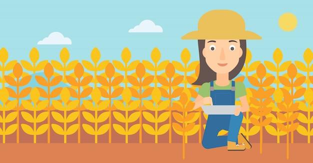 Agricultor com computador tablet no campo