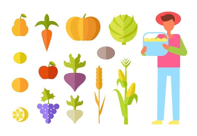 Agricultor de colheita legumes conjunto ilustração vetorial