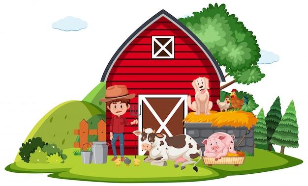 Agricultor e animais na fazenda