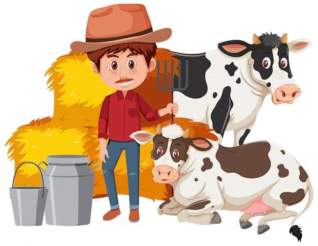 Agricultor e duas vacas em fundo branco