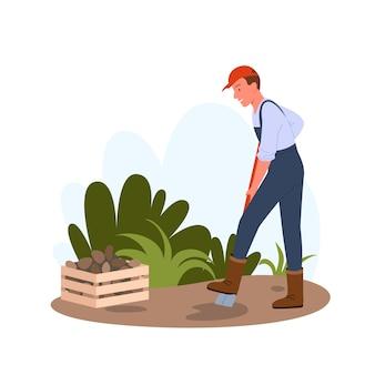 Agricultor homem segurando uma pá e trabalhando, jardineiro desenterrando safra de batatas, cultivando