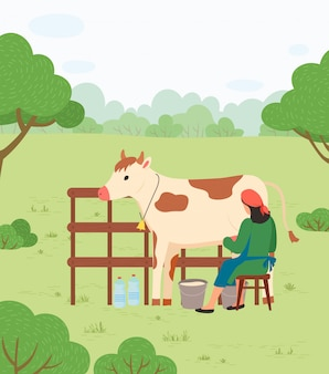 Agricultor mulher ordenha vaca, campo