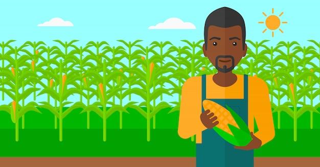 Agricultor segurando o milho.