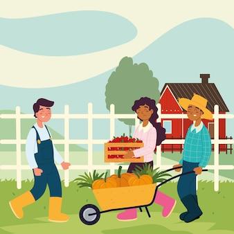 Agricultores com comida de carrinho de mão