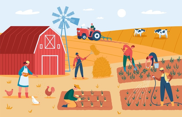 Agricultores trabalhando na fazenda, colhendo safras, alimentando animais, ilustração vetorial de terras agrícolas