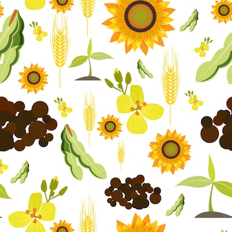 Agricultura agrícola planta de alimentos orgânicos trigo girassol sem costura padrão ilustração vetorial
