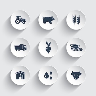 Agricultura, conjunto de ícones de agricultura, gado, porcos, hangar, colheitadeira, agrimotor, vegetais