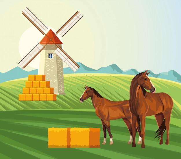 Agricultura moinho de vento fardos de feno e cavalos no campo