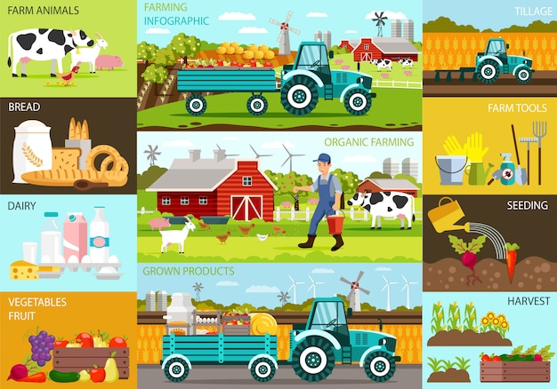 Agricultura orgânica infográfico e produtos cultivados.