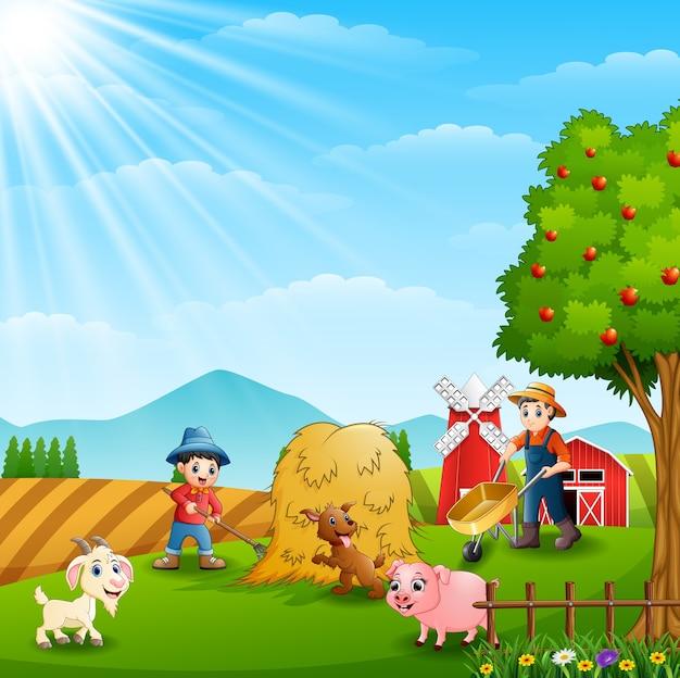 Agricultura trabalhando em fazendas com animais