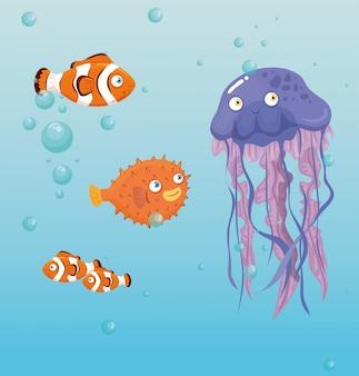 Água-viva animal marinho no oceano, com peixes ornamentais, habitantes do mundo do mar, criaturas subaquáticas fofas, habitat marinho