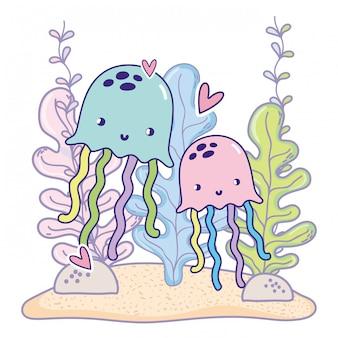 Água-viva casal animais com corações e plantas de algas