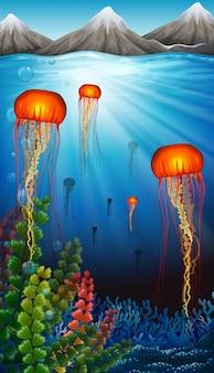 Água-viva nadando no fundo do oceano